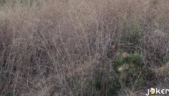 Land for Sale in Bhamdoun